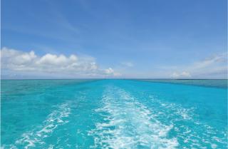OCEANSの夏休みのお知らせ