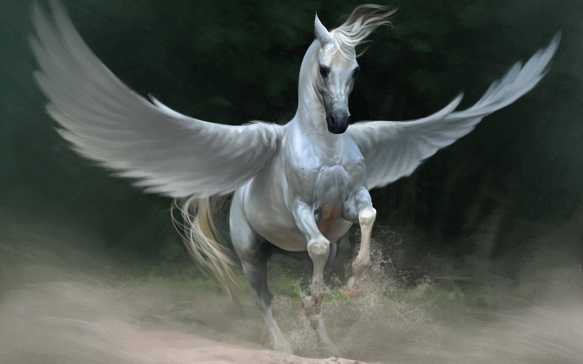 pegasus-fantasy-wings-running-1920x1200